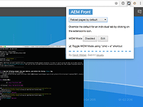 Screenshot of AEM Front extension and terminal